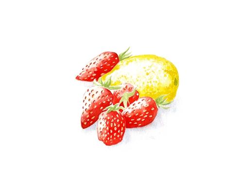 aquarelle-fraises-KURIOS.jpg